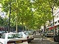 Paris - Avenue Daumesnil.jpg