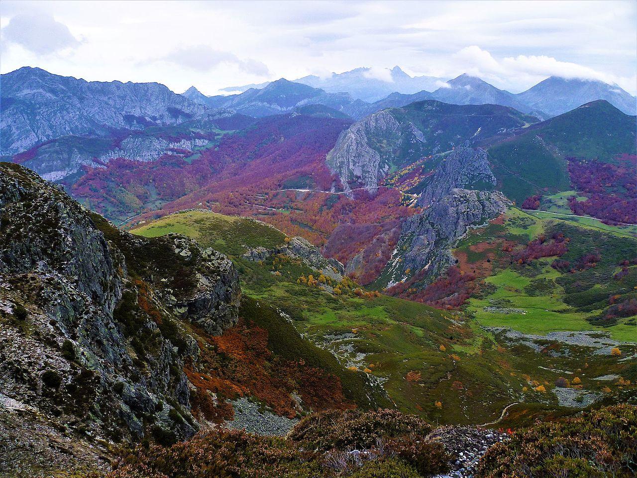 Parque Natural de Redes (Asturias).