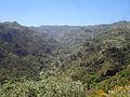 Parque Rural de Doramas - Valleseco.jpg