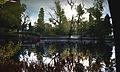 Parque Sarmiento (Lago).jpg