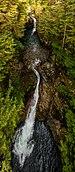 Parque del cañón Lynn, Vancouver, Canadá, 2017-08-14, DD 12.jpg