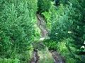 Permskiy r-n, Permskiy kray, Russia - panoramio (1260).jpg