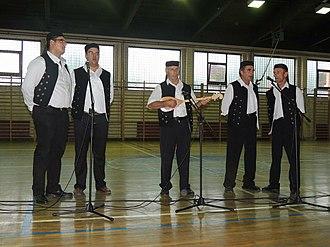 Bački Brestovac - Image: Petrovdanske svečanosti 2013