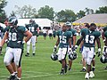 Philadelphia Eagles offensive linemen at 2009 training camp.jpg