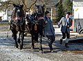 Pinzgauer Brauchtums- und Trachtenschlittenfest 23 2. Februar 2014 01.jpg