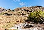 Piquero patiazul (Sula nebouxii), Punta Pitt, isla de San Cristóbal, islas Galápagos, Ecuador, 2015-07-24, DD 52.JPG