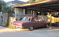 Plymouth Valiant (1965) with Chihuahua 2.JPG
