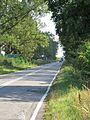 Podlaskie - Narew - Chrabostówka DW685 20110910 01.JPG