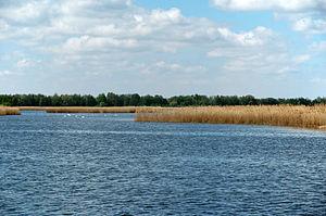 Milicz Ponds - View of Słoneczny Górny pond