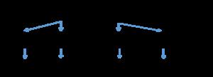 Polylysine - Image: Polylysine derivatives