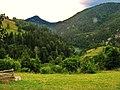 Popovici, Zaovine, Serbia - panoramio (3).jpg