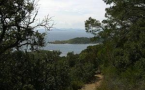Îles d'Hyères - Image: Port cros nature 2