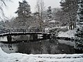 Priory Park in the snow - geograph.org.uk - 455347.jpg