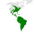 Progne distribution map.png