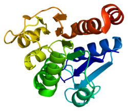 Protein PARK7 PDB 1j42.png