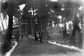 Queensland State Archives 5753 Mabuiag Torres Strait Island June 1931.png