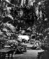 Queensland State Archives 889 A corner of the TeaRoom Fairyland Kuranda via Cairns North Queensland March 1931.png