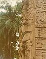 Quirigua Stela Detail 1976.jpg