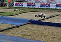 RC cars over the jumps.jpg