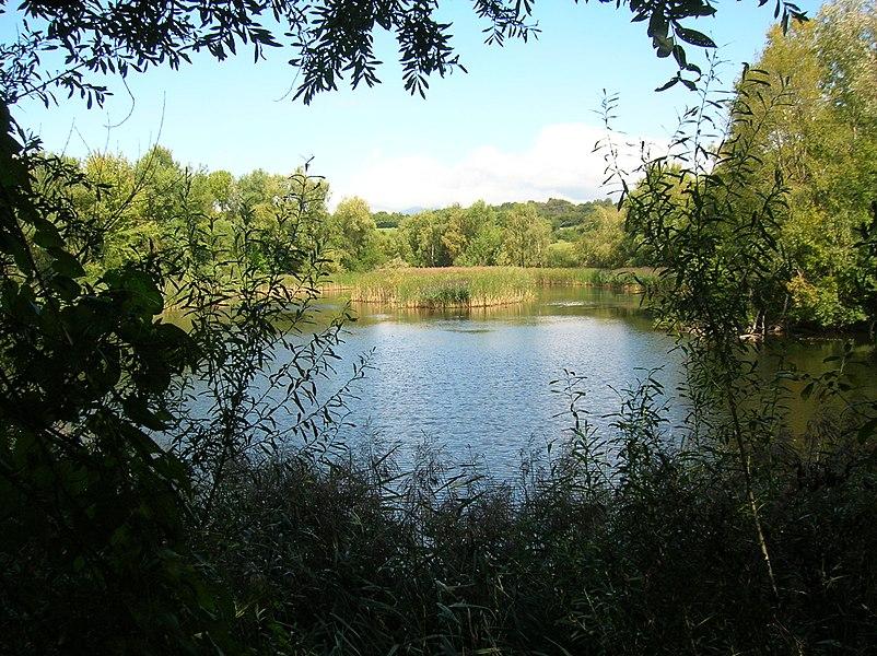 Réserve naturelle régionale de l'étang de Haute-Jarrie, Jarrie, Isère, Rhone-Alpes, France.