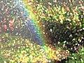 Rainbow in garden computer manipulated.jpg