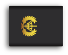 Ranks Dutch police wikimedia by venturedesign 300dpi Brigadier.png