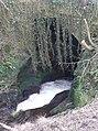 Rapids on Raven Beck, Kirkoswald - geograph.org.uk - 1146699.jpg