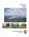 Reading Fire Review.pdf