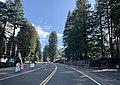 Redcrest, California.jpg