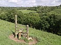 Redundant stile near Quoditch - geograph.org.uk - 488433.jpg