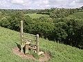 Redundant stile near Quoditch - geograph.org.uk - 488433.jpg