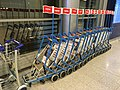 Reima luggage carts (42050729241).jpg