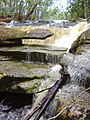 Reserva ecológica Lajes - panoramio (1).jpg