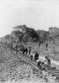 Rhodesian Railways under construction near Broken Hill Zambia.png