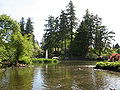 Rhody Garden Pond.JPG