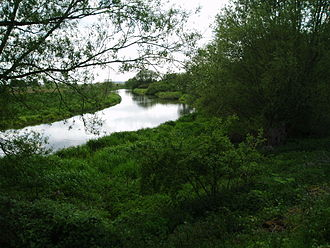 River Idle - The river at Idle Stop. The original course would have passed through the trees to the right.