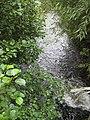 River Leadon flowing downstream - geograph.org.uk - 935962.jpg