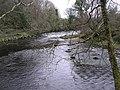River Roe - geograph.org.uk - 716660.jpg