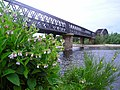 River Spey Railway Viaduct - geograph.org.uk - 1136194.jpg