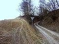 Road gully Wilczyce.jpg