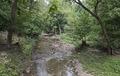 Rock Creek Park, NW, Washington, D.C LCCN2010641494.tif