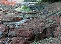 Rock Strata beneath collapsed canal, Stourbridge - geograph.org.uk - 971610.jpg