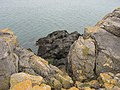Rocks at Eglwys Siglen where the MV Hindlea came to grief - geograph.org.uk - 754648.jpg