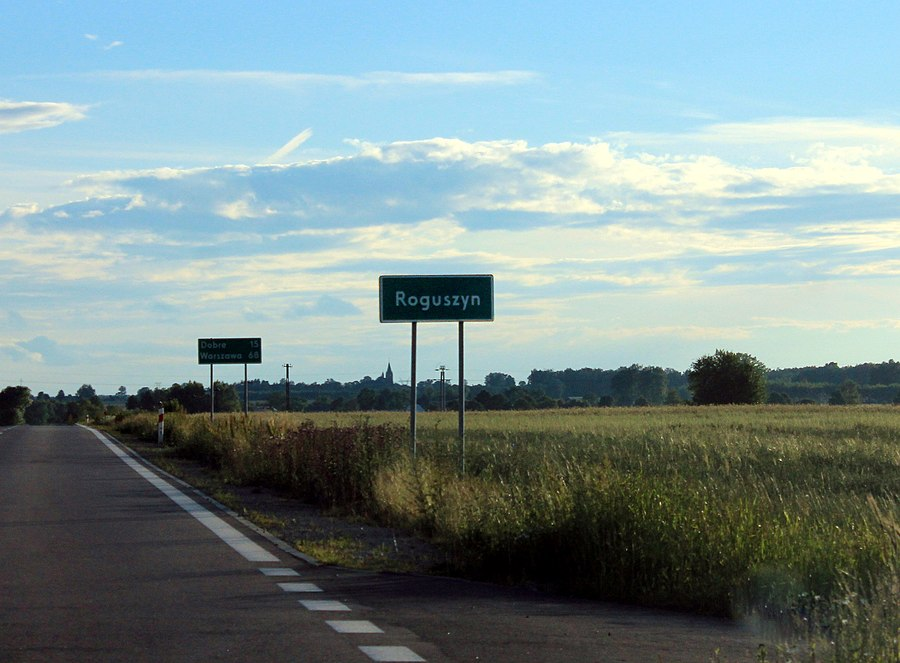 Roguszyn, Węgrów County