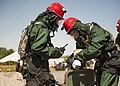 Rope Rescue Team Training 160616-Z-DV153-007.jpg