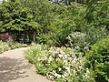 Russell Square Garden - geograph.org.uk - 463426.jpg