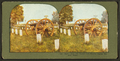 Rustic seat, old cannon and graves, Dayton soldier's home, from Robert N. Dennis collection of stereoscopic views.png