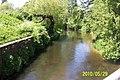 Rzeka Płonia - panoramio.jpg