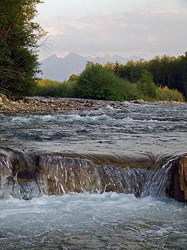 Biela voda (prítok dunajca)
