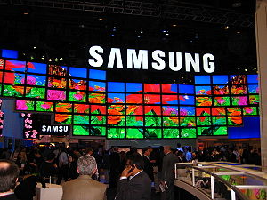 Taken at the 2009 Consumer electronics show, L...